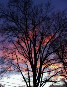January skies - photography