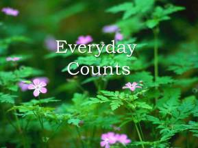 Motivation -Everyday Counts